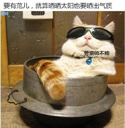 要优雅不要污:人在江湖漂 一定要有强大的气场